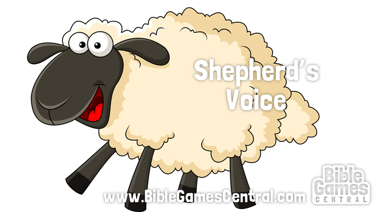 Shepherd's Voice Youth Group and Sunday School Game