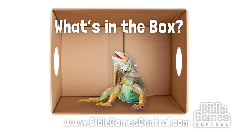 What's in the Box Youth Group Game