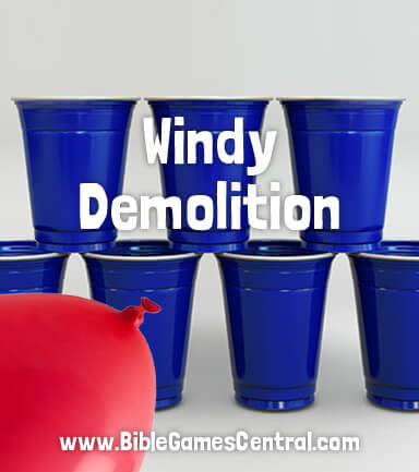 Windy Demolition